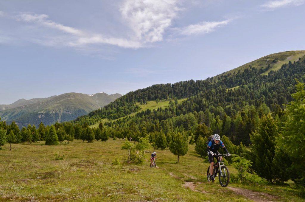 Zwei Mountainbiker im alpinen Gelände mit grünen Nadelbäumen